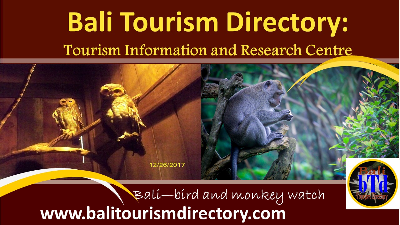 Bali Tourism Directory-bird and monkey watch